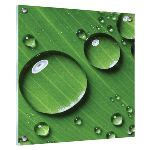 Acrylic_Leaf.jpg